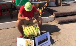 «Самолетная кукуруза»: саратовец продает по 500 рублей за «целебный эффект»