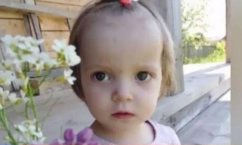 В Вологодской области нашли пропавшую двухлетнюю девочку