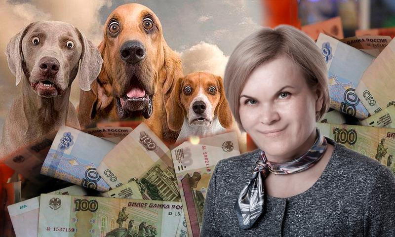 Коммунальщики Братска обложили собачников налогом – 70 рублей с хвоста