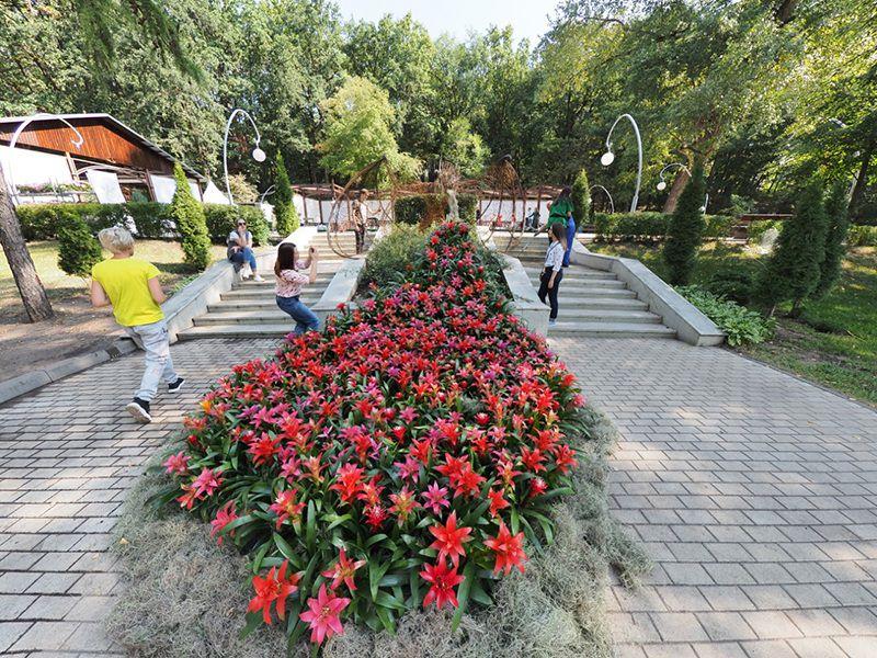 Фестиваль «Город-Сад» в Воронеже посетили рекордные 308 тысяч человек