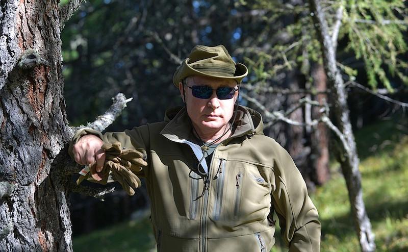 Путин и Шойгу прогулялись по осенней тайге
