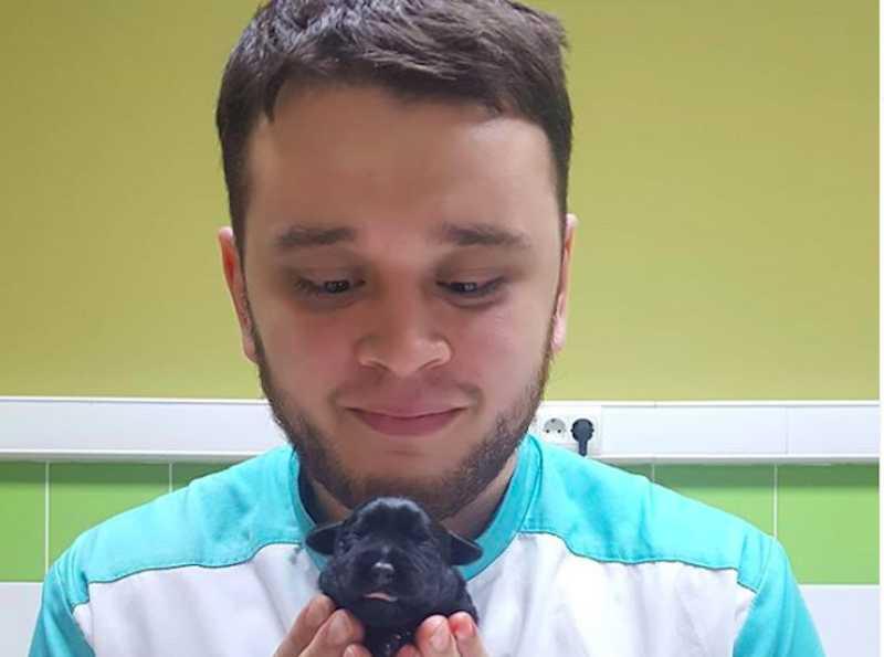 На ветеринара, который не усыплял, а отдавал в добрые руки животных, пожаловались в прокуратуру
