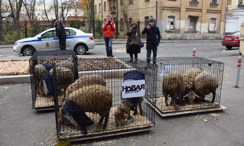 """Постоянные клиенты """"Новой газеты"""" могут рассчитывать на скидки на публикацию компромата"""