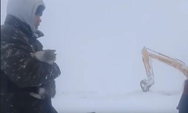 Трогательное спасение кота из-под снежных завалов в Казахстане попало на видео
