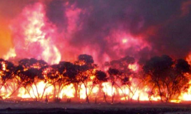 В кромешном аду: видео работы пилотов на пожарах опубликовали ВВС Австралии