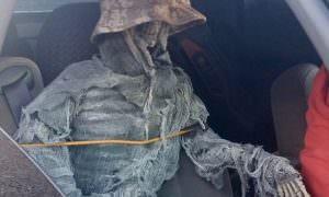 Американец посадил в машину скелет, чтобы ездить по выделенной полосе