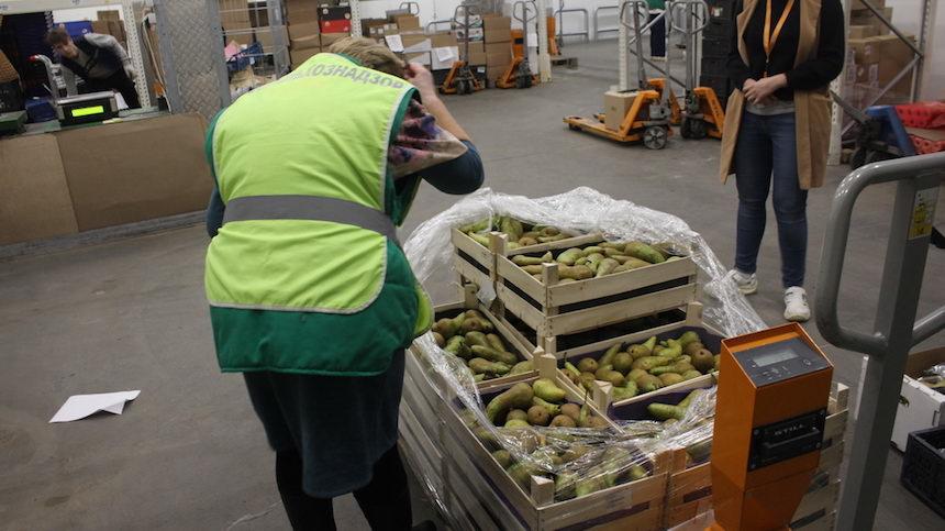 Россельхознадзор раздавил 12,5 килограммов «беспризорных» груш