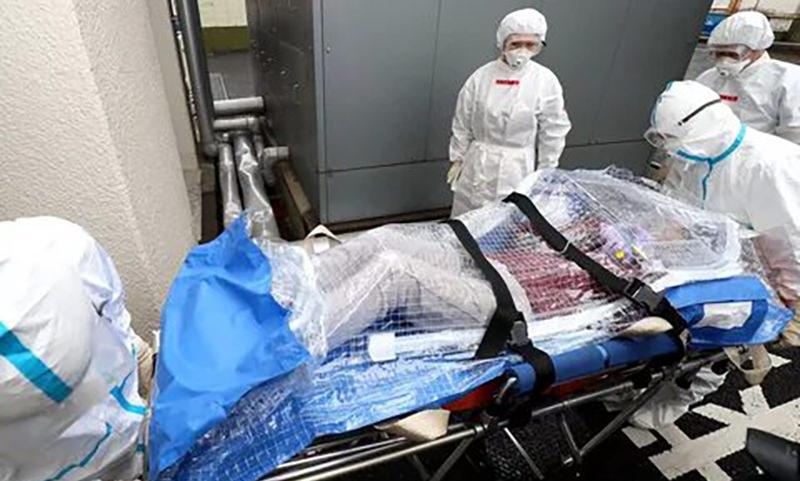 Число погибших от нового коронавируса засутки выросло в 1,5 раза