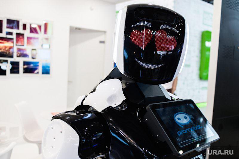 Робот рвется в губернаторы Пермского края