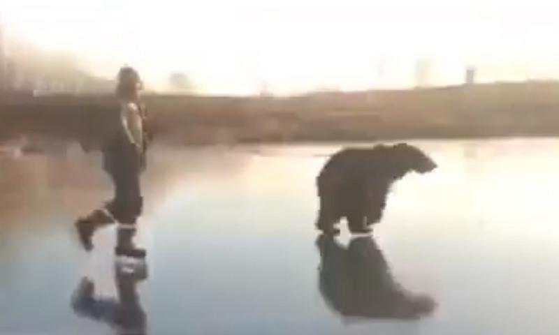 Россиянин прокатился по льду на коньках с медведем на поводке