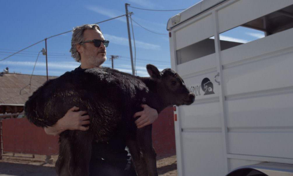 Хоакин Феникс забрал корову и ее теленка со скотобойни