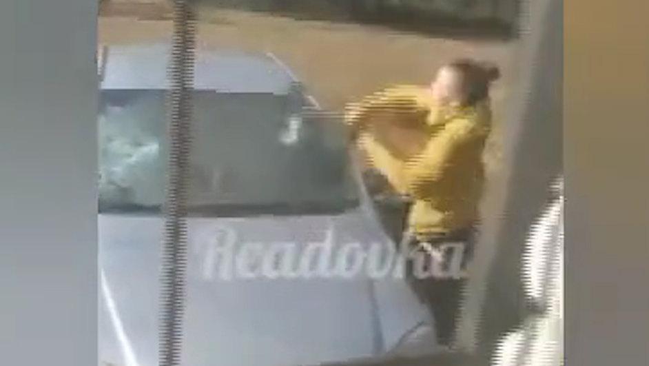 Оценка работы: женщина разбила топором автомобиль чиновницы в Смоленской области