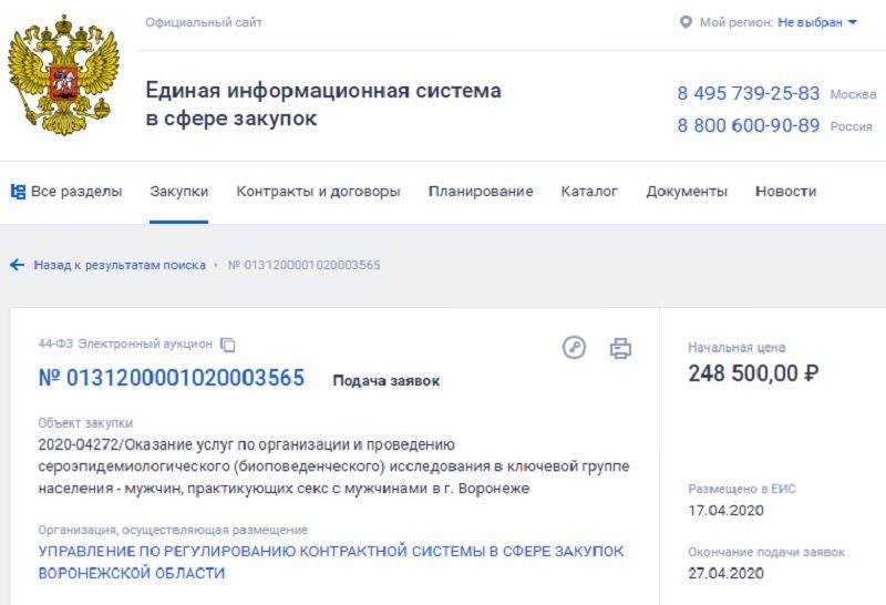 Чиновники в Воронеже разыскивают 100 гомосексуалистов за 248 тысяч бюджетных рублей