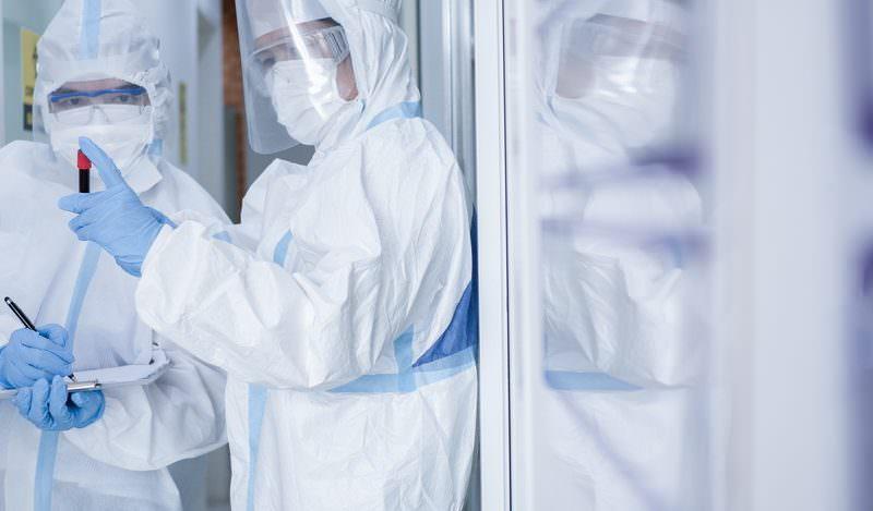 Гибрид свиного и птичьего: найден новый вирус, угрожающий еще одной пандемией