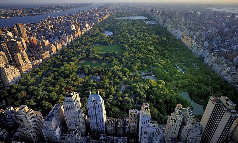 В США жертв коронавируса будут хоронить в парках