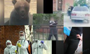 Самые интересные видео 29 мая
