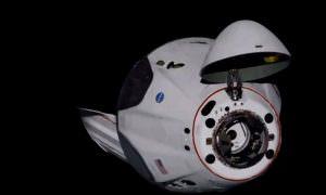 Корабль Илона Маска впервые доставил астронавтов на МКС