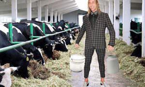 Российский сыровар предложил жалующемуся на безденежье Тарзану и другой попсе работу