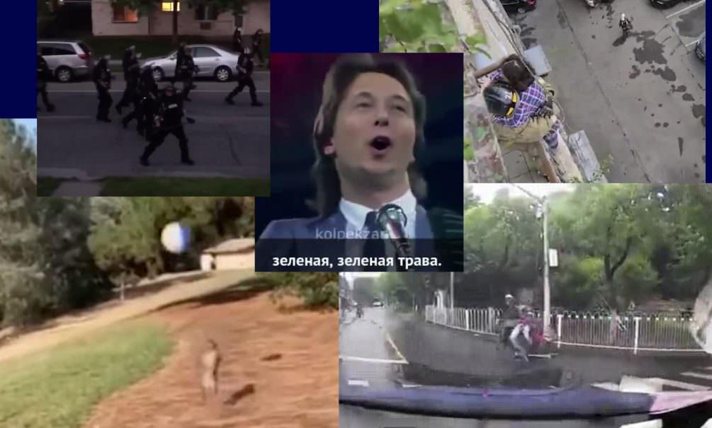 Самые интересные видео 31 мая