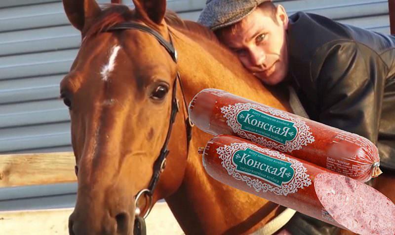 Последний дончак: как   элитную породу лошадей рейдеры пустили на колбасу