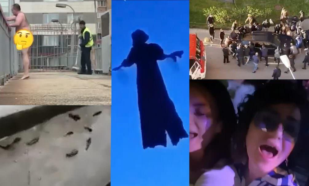 Самые интересные видео 24 мая