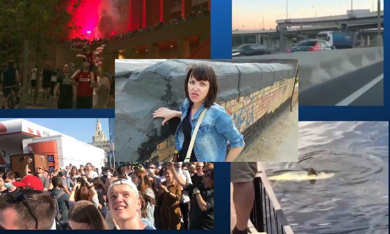 Самые интересные видео 26 июня