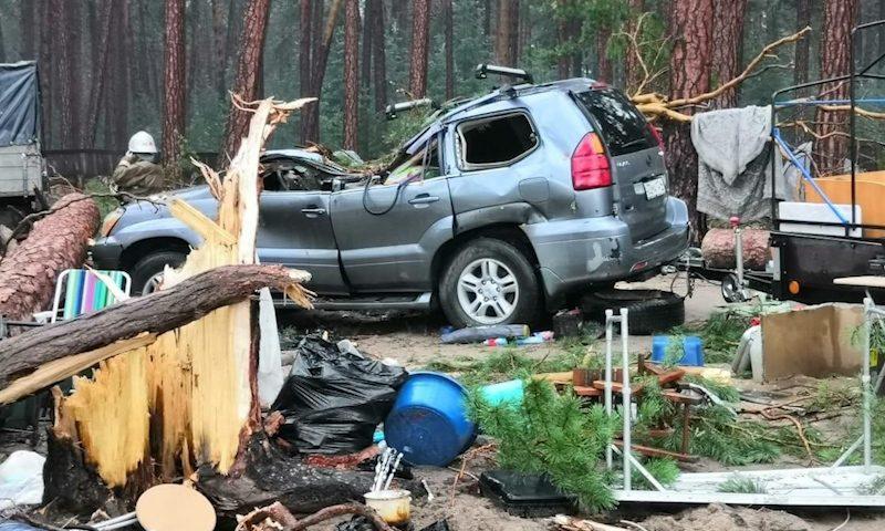 В Красноярском крае ветер повалил деревья на палатки: один погиб, пятеро пострадали