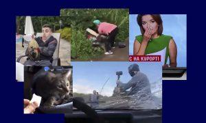 Самые интересные видео 15 июля