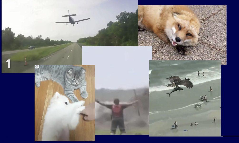 Самые интересные видео 3 июля