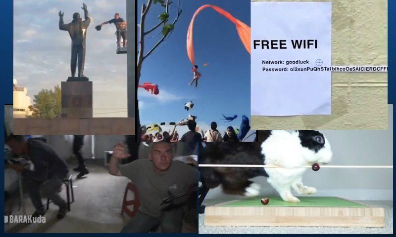 Самые интересные видео 30 августа