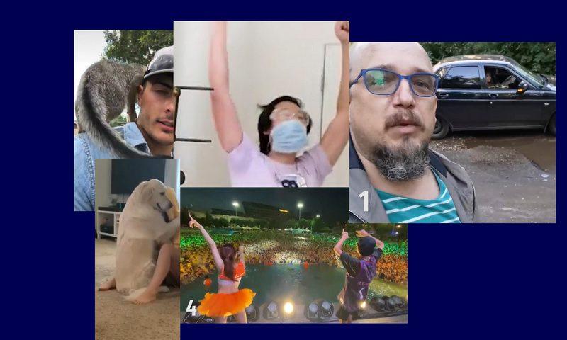 Самые интересные видео 18 августа