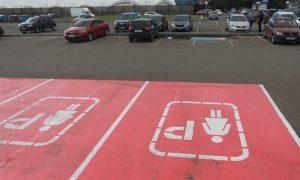 Розовую парковку в Казани обвинили в нарушении Конституции РФ и перекрасили