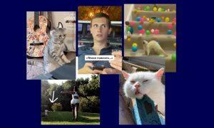 Самые интересные видео 9 августа