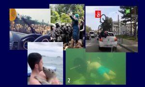 Самые интересные видео 15 августа
