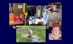Самые интересные видео 8 августа