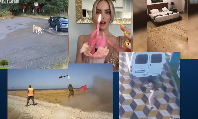 Самые интересные видео 9 сентября
