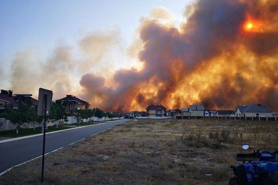 Сто гектаров огненного ада: леса полыхали вместе с домами в Воронежской области