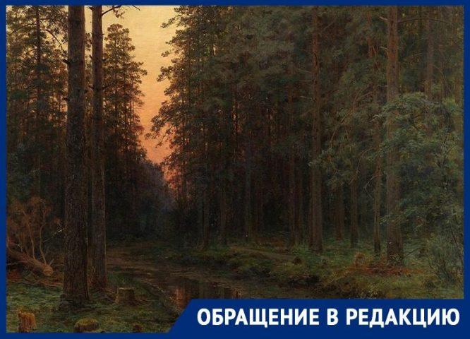 Дело об уклонении таможенных платежей на 20 млн рублей по картине Шишкина затормозилось на уровне следствия