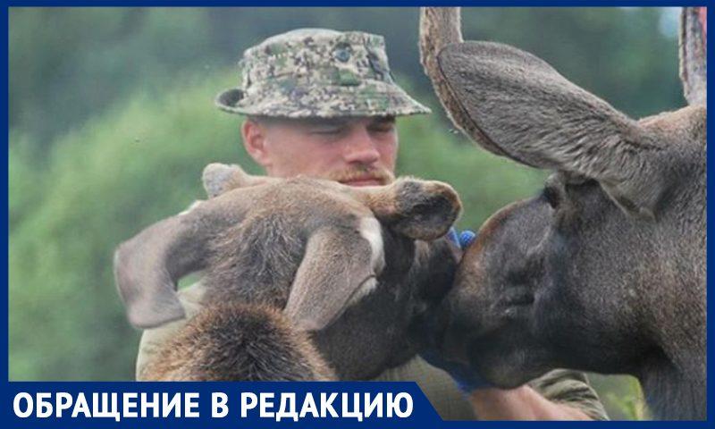 «Отец лосей»  в одиночку борется с браконьерами в Подмосковье