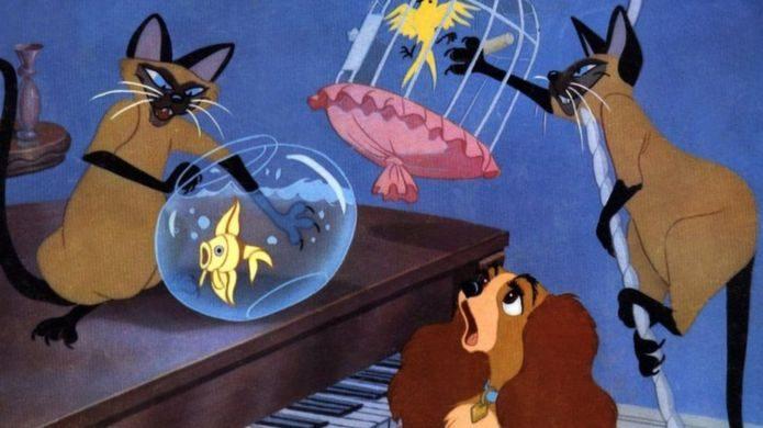 Disney будет предупреждать зрителей о расизме в своих классических мультфильмах