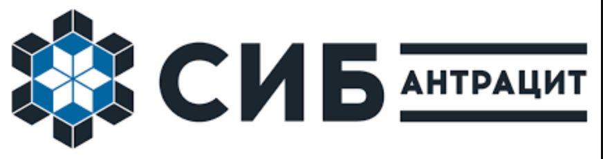 Глава правления АО «Сибантрацит» Катерина Босов объявила о планах перевести 43% группы «Аллтек»