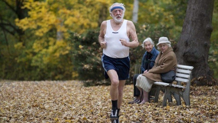 Эксперты назвали страны с идеальной и худшей пенсионной системой