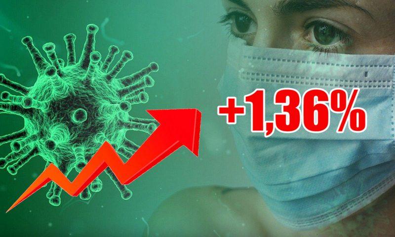 Динамика коронавируса на 24 октября