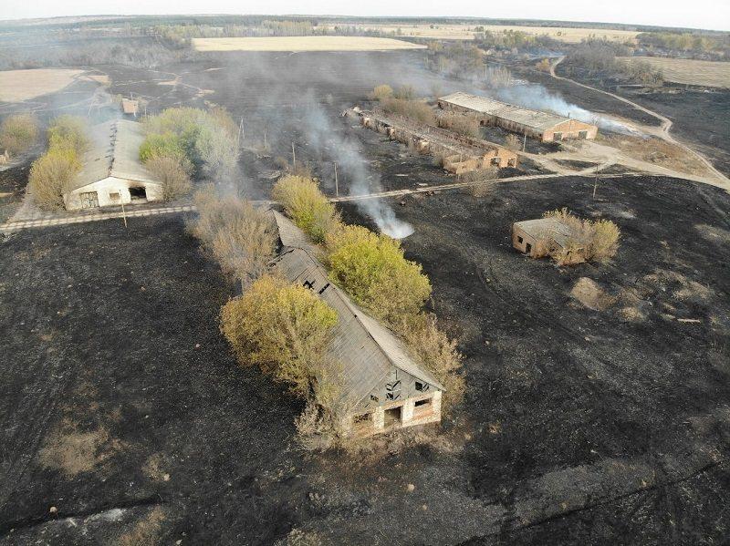Неудачная стрельба из военного вертолета спровоцировала масштабный пожар в заповеднике под Воронежем