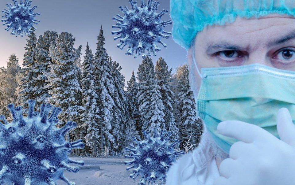 Версия «Тайга»: по Сибири ходит коронавирус-мутант