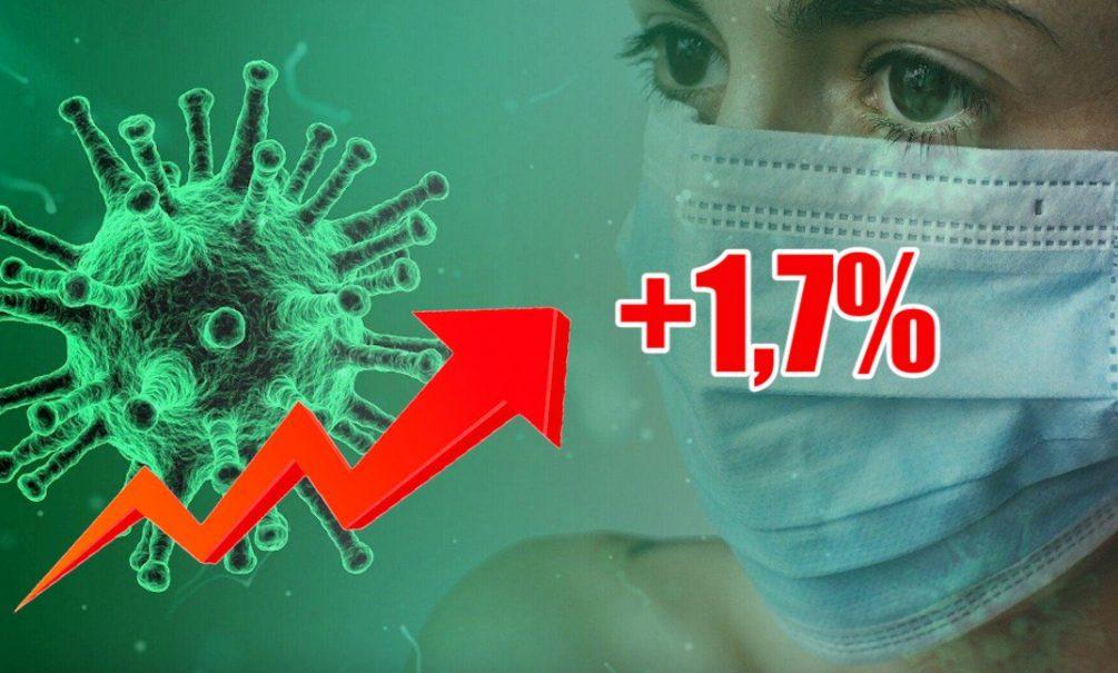Динамика коронавируса на 15 ноября
