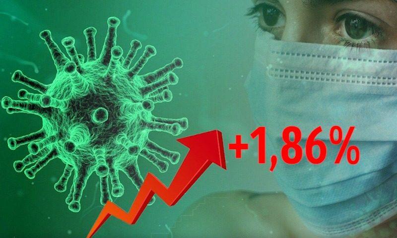 Динамика коронавируса на 16 ноября
