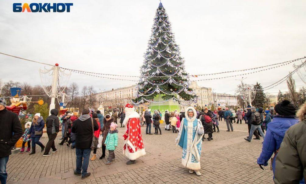 Бизнесмен хотел установить главную елку Воронежа за копейку, но проиграл торги предложению в 2 млн рублей