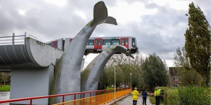 Хвост кита спас поезд от катастрофы в Роттердаме