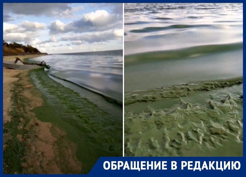«Плюхает, как болото»: уровень Цимлянского водохранилища приближается к «мертвому объему»